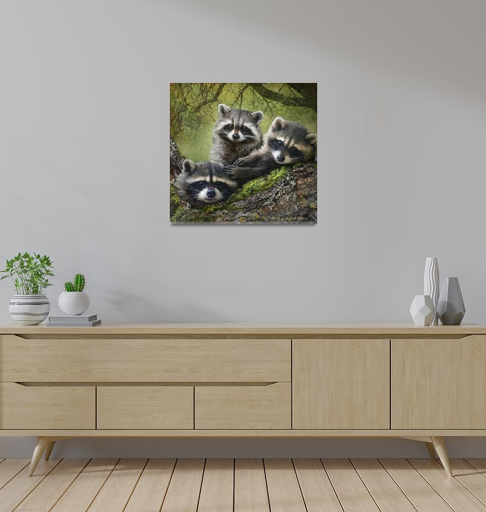 """raccoons as art""  (2013) by rchristophervest"