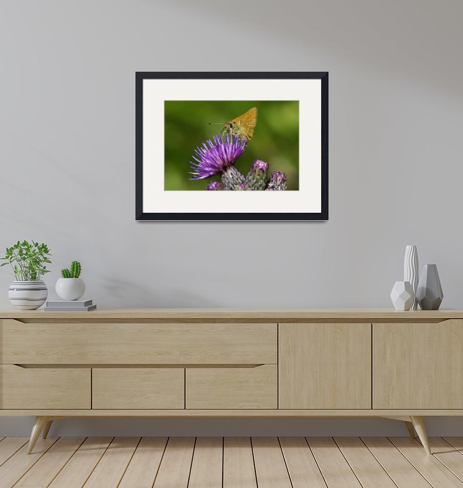 """""""Thistle and butterfly""""  (2007) by starsofglass"""