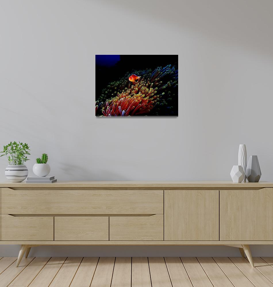 """""""Neon Anemone""""  (2005) by Mac"""
