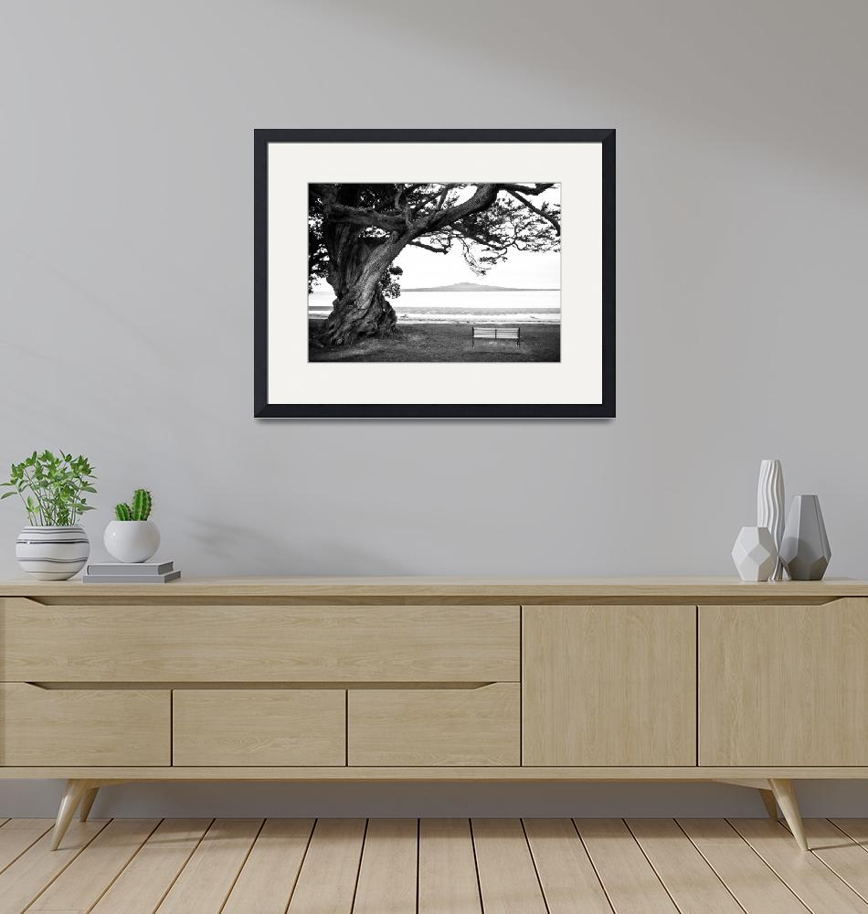 """""""Old Lone Tree on the ocean beach""""  (2008) by sardinelly"""