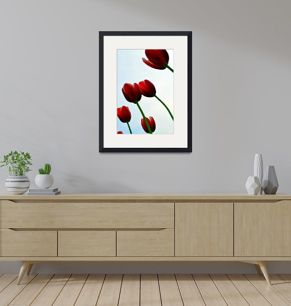 """""""Red Tulips from the Bottom Up""""  by Michelle1991"""