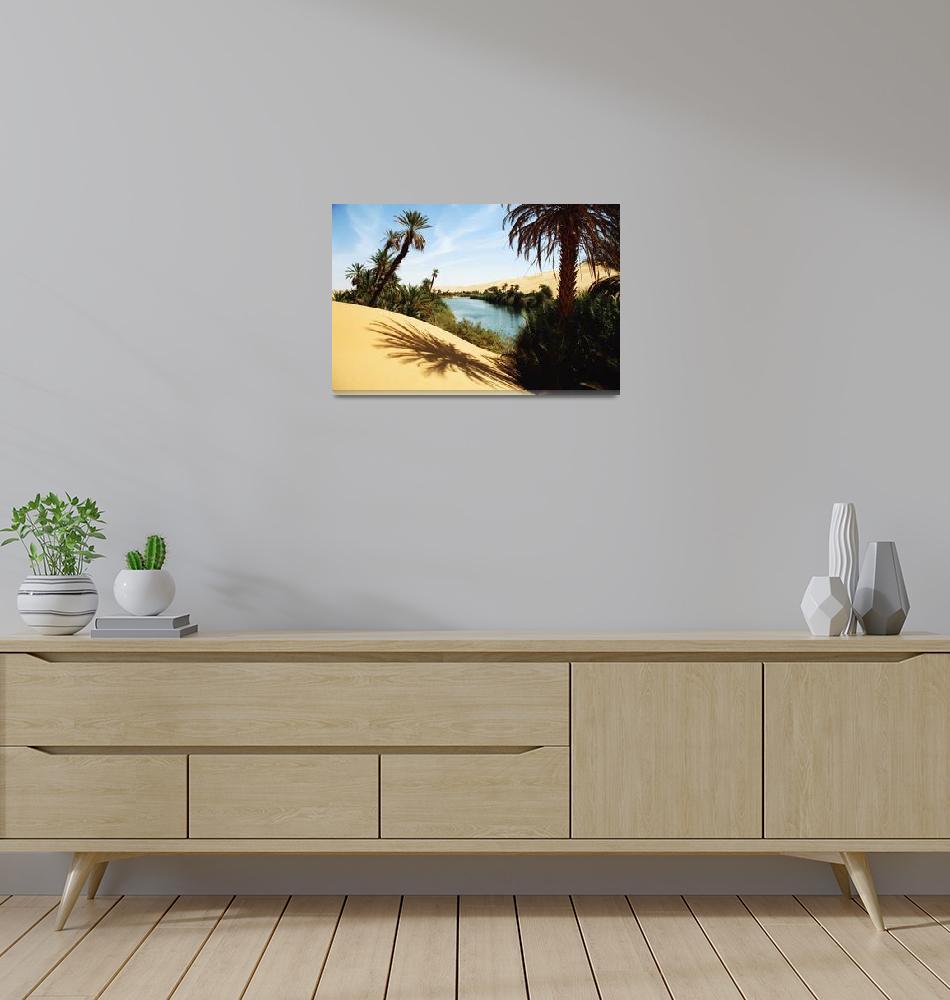 """Umm Al-Maa Lake, Ubari Sand Sea, Libya""  by DesignPics"