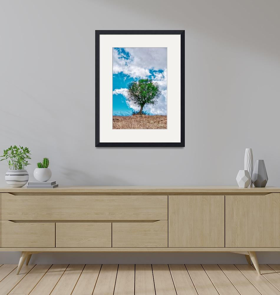 """""""Olivetree on the hill""""  (2019) by LuisGodinho"""