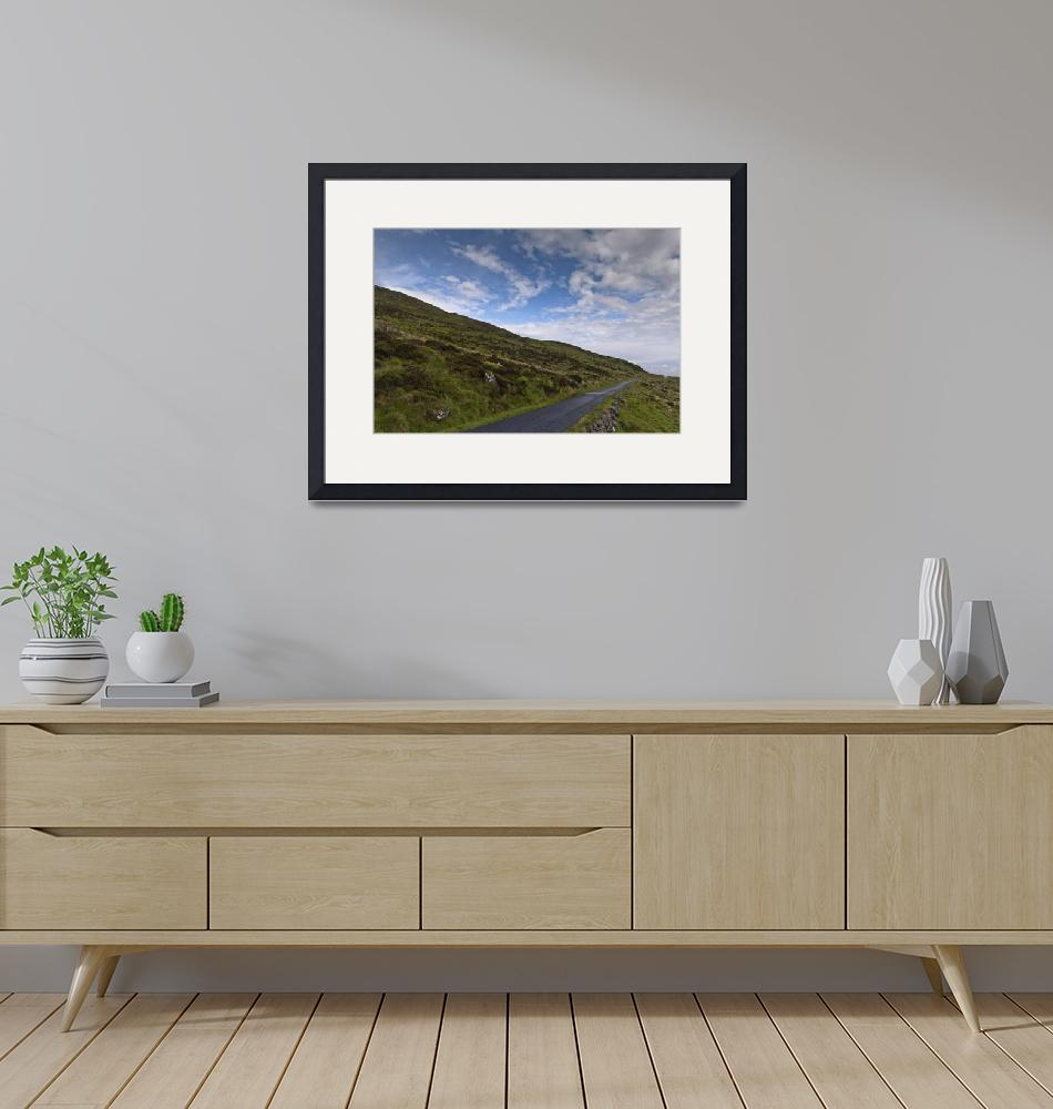 """""""Slieve Gullion Slope and Forest Road""""  (2014) by MichaelStephenWills"""