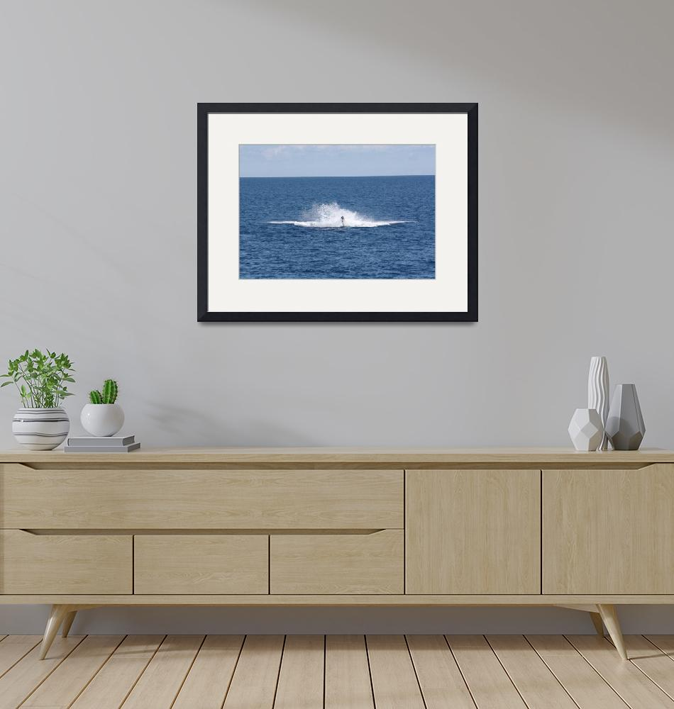 """""""NaP_ Whale Watching193a""""  by nevilleprosser"""