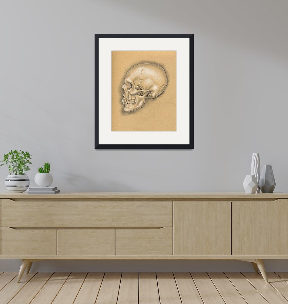 """""""Skull: Lateral View""""  (2015) by christinekerrick7"""