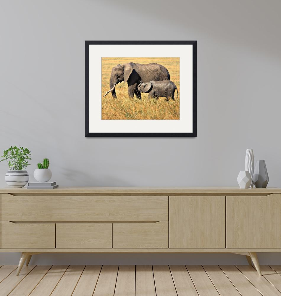 """""""Mother and Child- African Elephants""""  (2013) by mjphoto-graphics"""