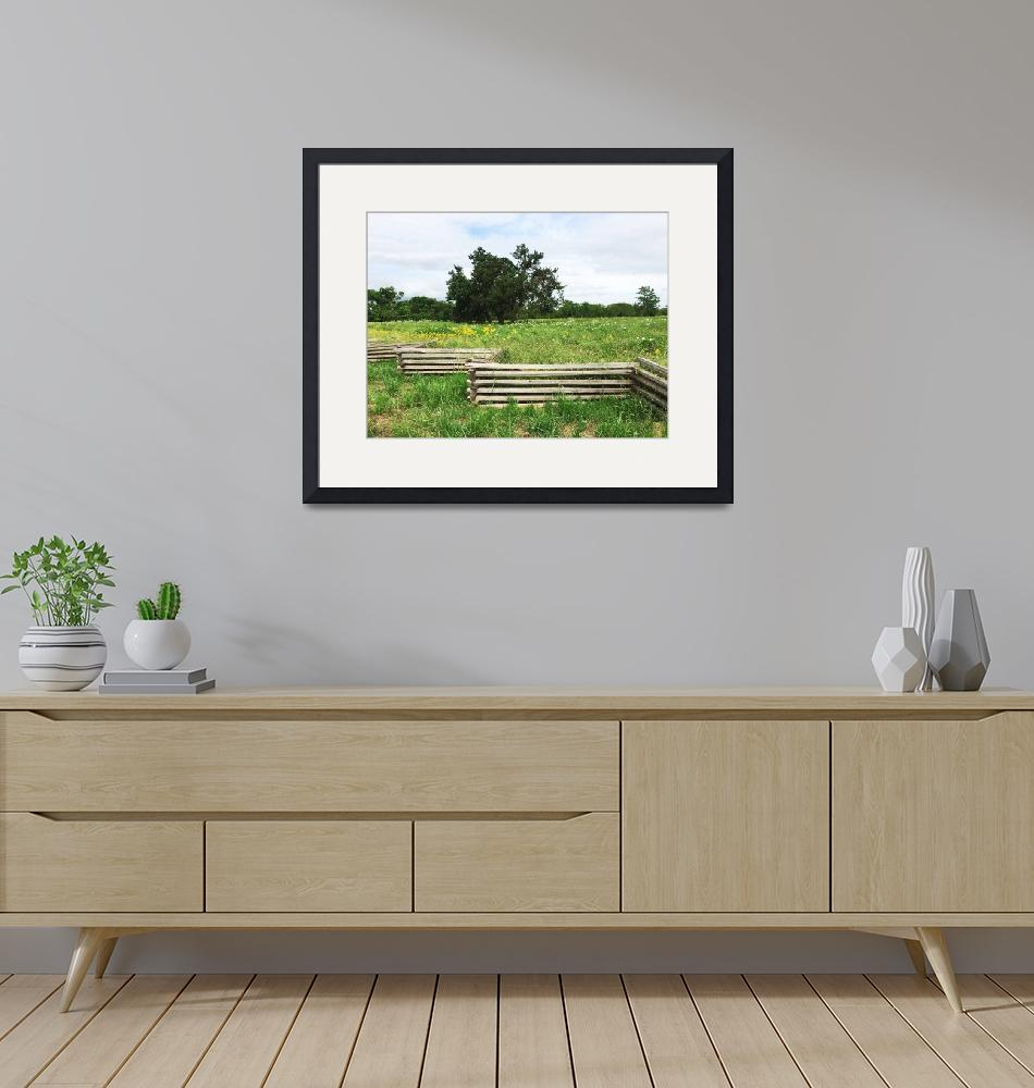 """""""Meadow Behind Wooden Fence""""  by SerenicArt"""