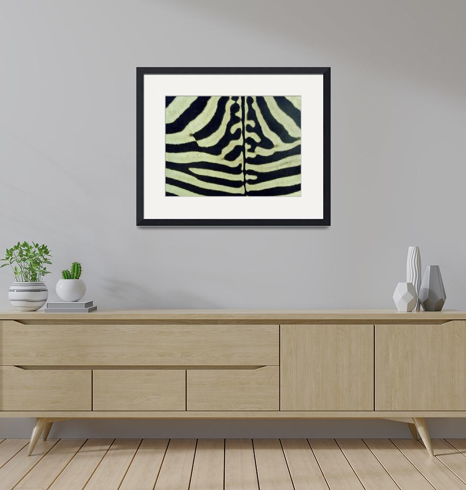 """ZEBRA HYDE""  (2011) by KATHY"