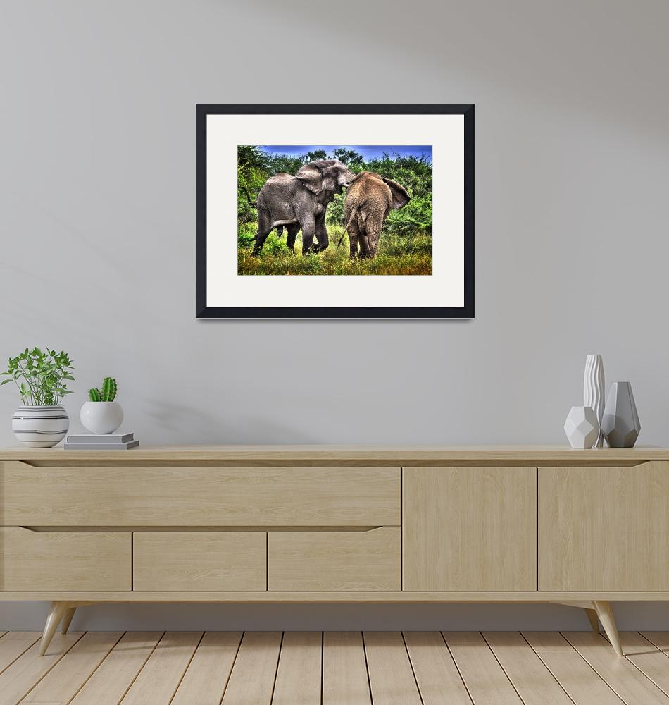 """""""Elephants in Africa""""  (2013) by southafricaphotos"""