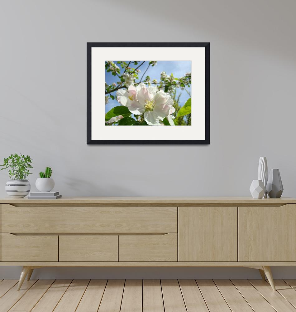 """""""Spring Tree Blossom Flowers art prints Gardens""""  (2014) by BasleeTroutman"""