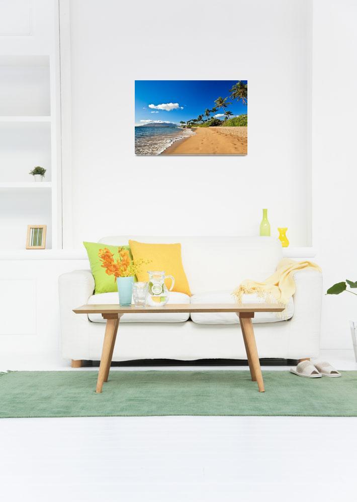"""""""Wailea beach Maui 19329&quot  (2015) by RJ"""