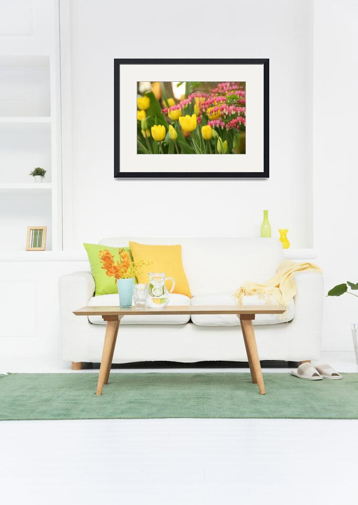 """""""Yellow Tulips and Bleeding Hearts""""  by AndreaMoorePhotography"""