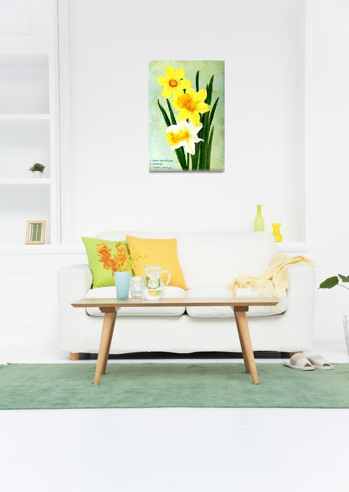 """""""Daffodil Flower Advertisement 1913""""  (2013) by TheNorthernTerritory"""
