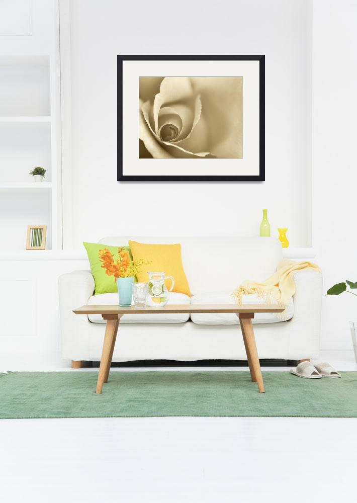 """""""Gold Coloured Romantic Floral Wall Art&quot  (2012) by NatalieKinnear"""