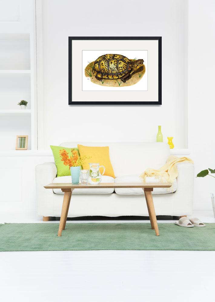 """""""Eastern Box Turtle&quot  by inkart"""
