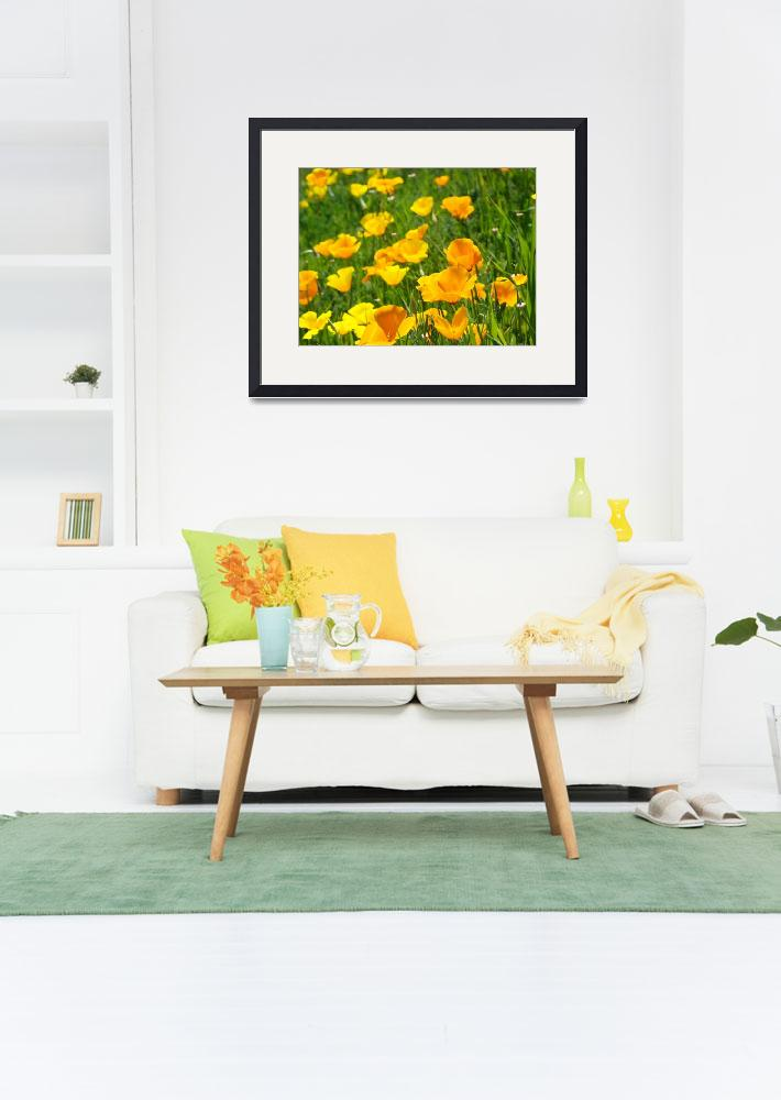"""Poppy Flower Green Summer Meadow Art Print""  (2014) by BasleeTroutman"