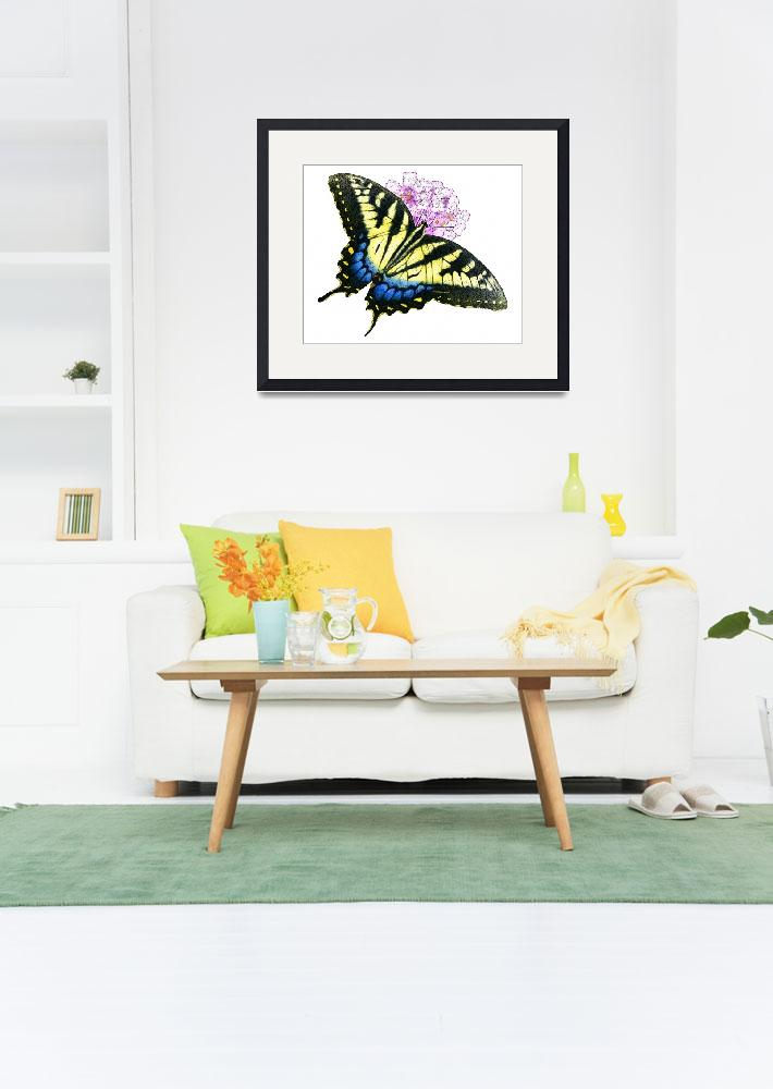 """""""Eastern Tiger Swallowtail Butterfly""""  by inkart"""