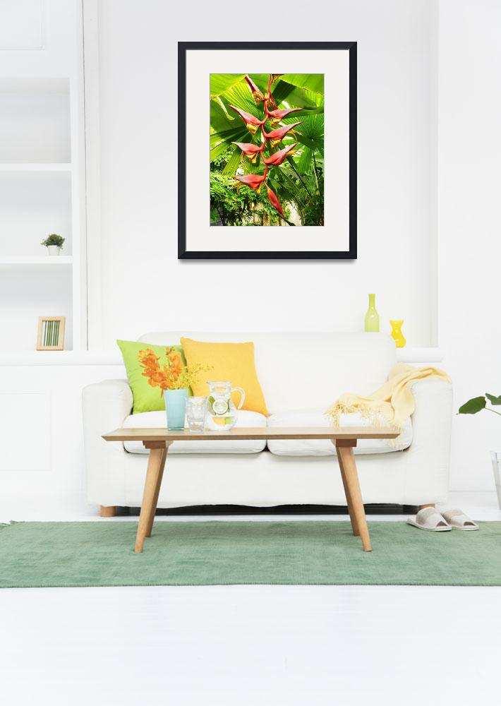 """""""Heliconia and palms 3&quot  by stephenbmack"""