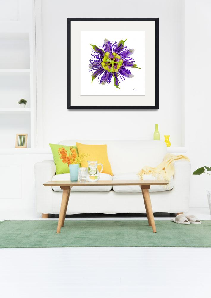 """Yellow Green and Violet Passion Flower 59674A&quot  (2018) by Ricardos"