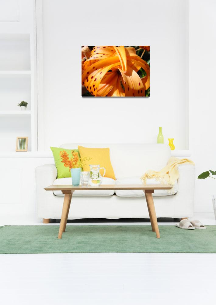 """""""LILIES Art Tiger Lily Flower Print Baslee Troutman&quot  (2009) by BasleeTroutman"""