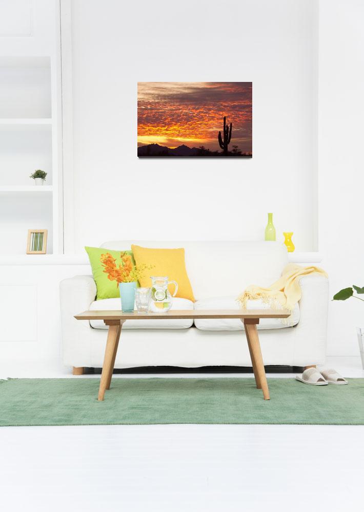 """""""Arizona November Sunrise With Saguaro&quot  (2011) by lightningman"""