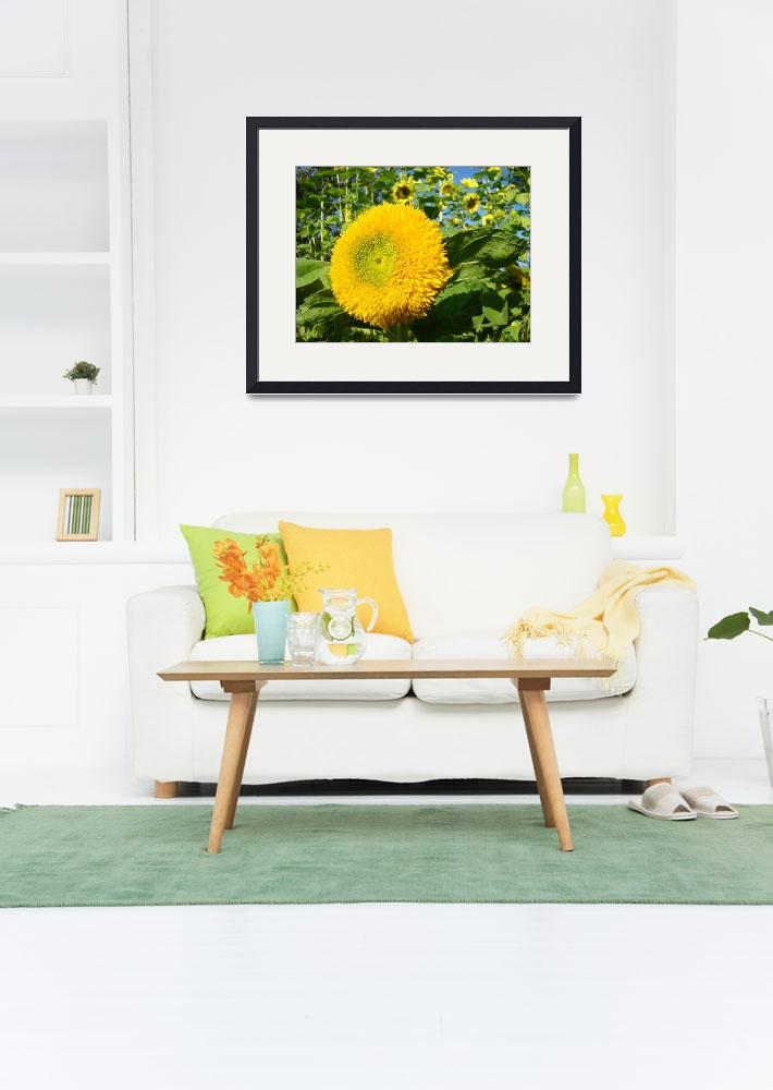 """OFFICE ART PRINTS SUNFLOWER YELLOW Baslee Troutman""  (2009) by BasleeTroutman"