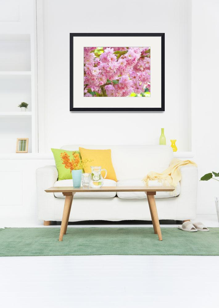 """""""Spring Tree Blossoms Flowers art prints""""  (2011) by BasleeTroutman"""