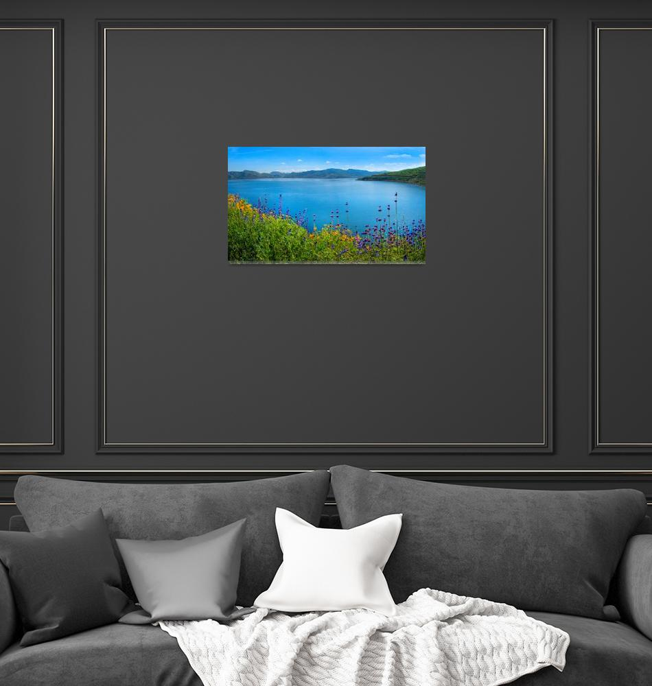 """Diamond Valley Lake Panorama - Superbloom 2019""  (2019) by LynnBauer"