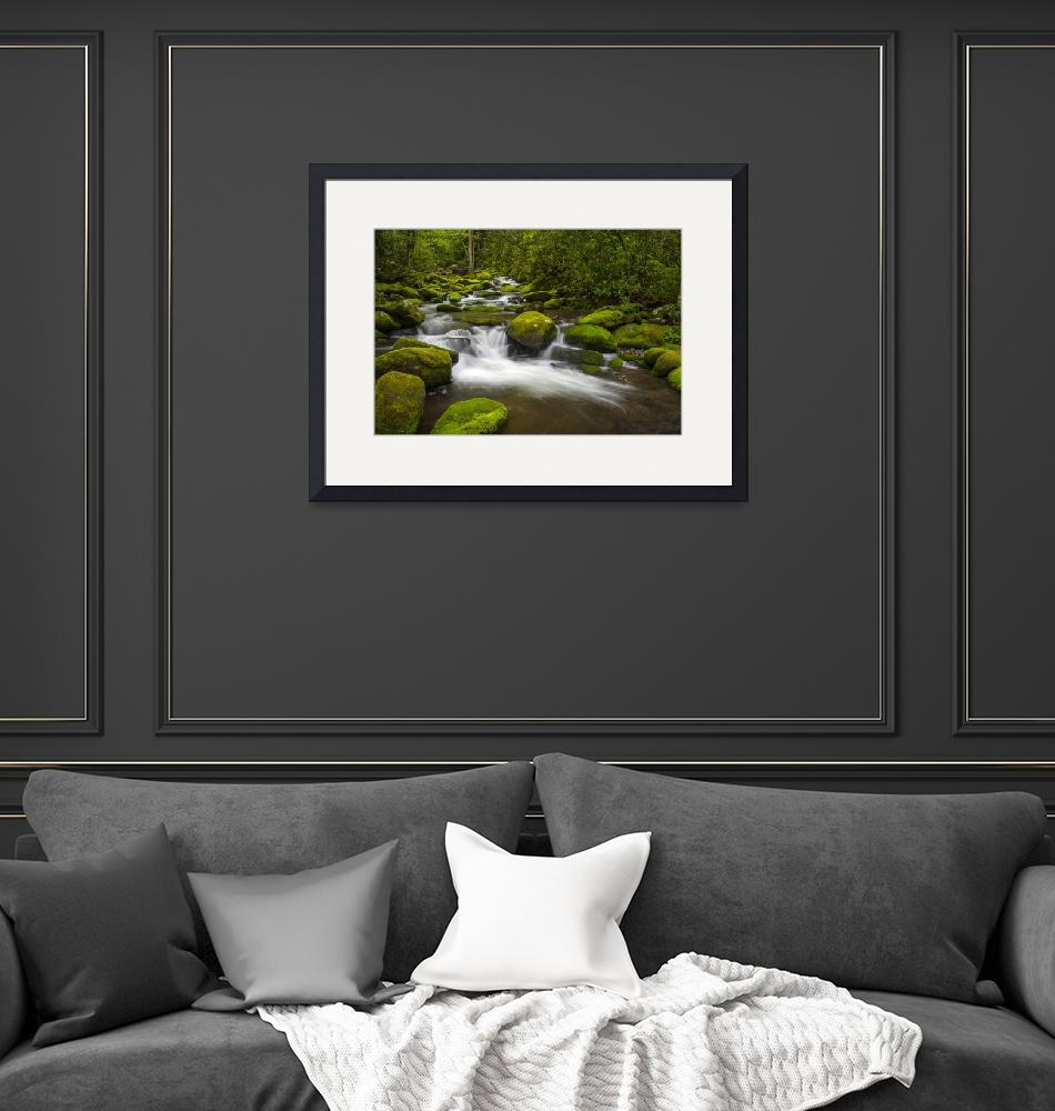 """Great Smoky Mountains National Park River Paradise""  (2012) by DAPhoto"