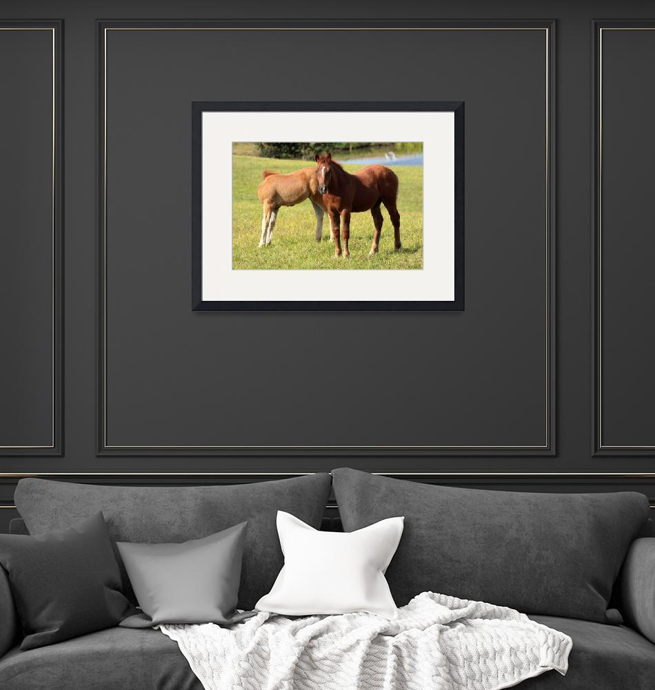 """""""Young horses""""  (2008) by Piotr_Marcinski"""
