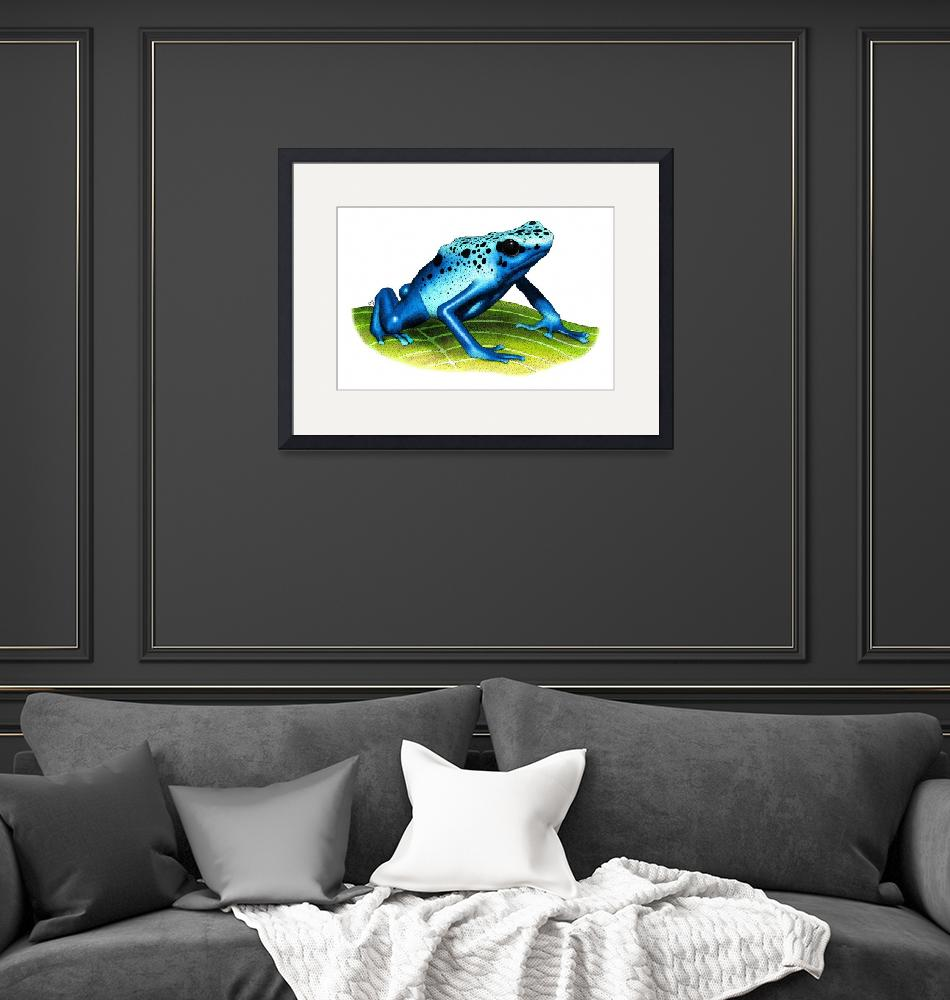"""Blue Poison Dart Frog""  (2009) by inkart"