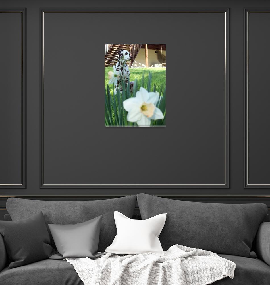 """Raisin & Daffodils"" (2010) by crittersbychris"
