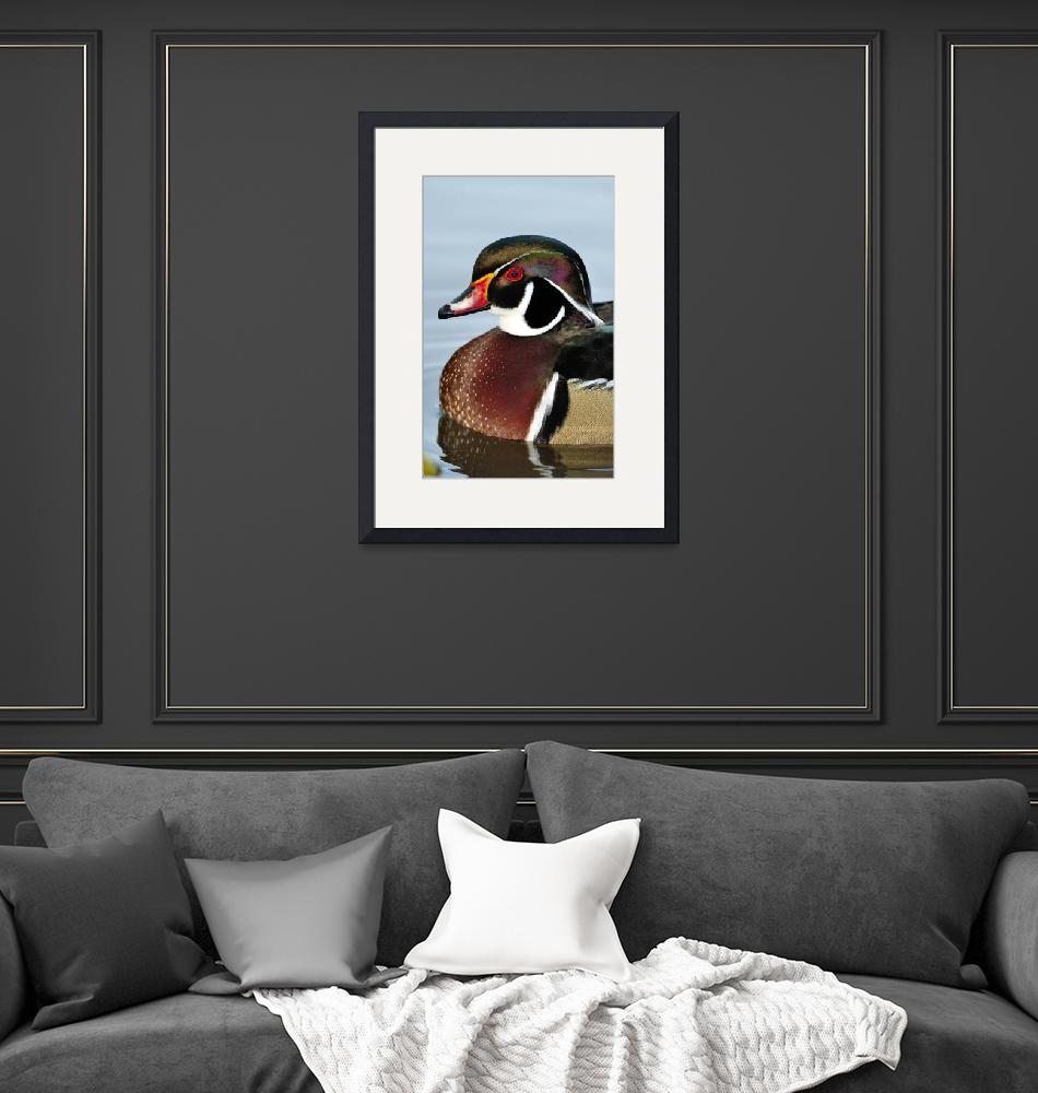 """""""Portrait of a Wooden Duck""""  (2003) by JoaoPonces"""
