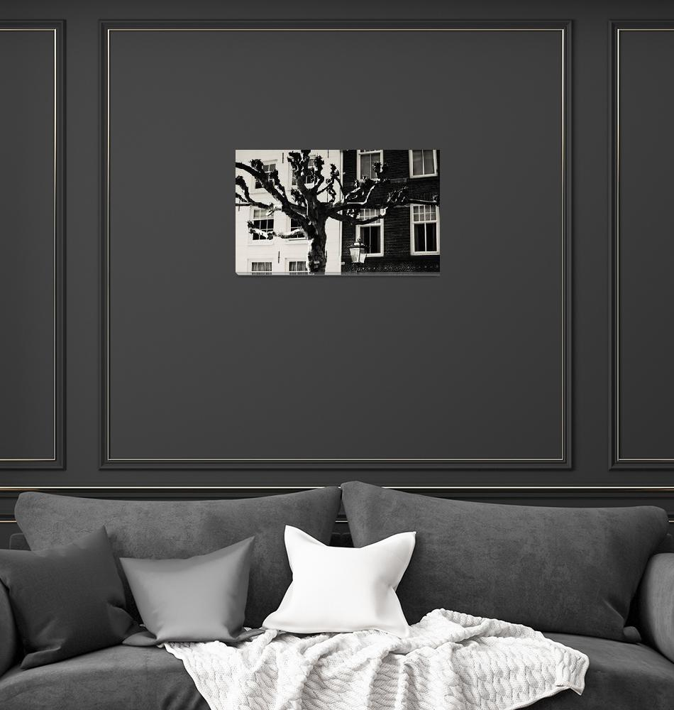 """""""Amsterdam Black and White""""  (2014) by JennyRainbow"""