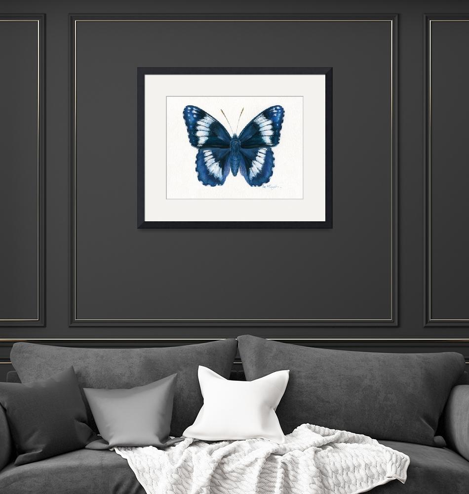 """Western Admiral butterfly""  (2008) by LisaMclaughlin"