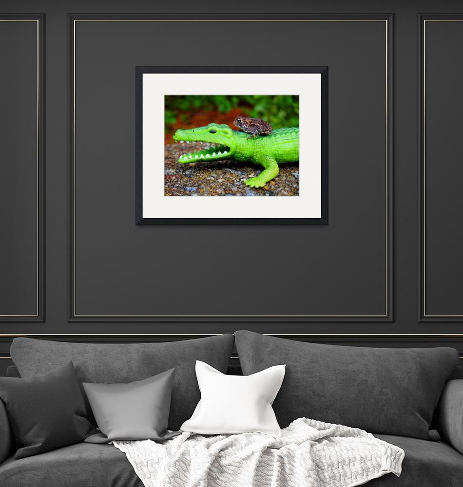 """""""Croc & Toad"""" (2009) by cameras4kids"""