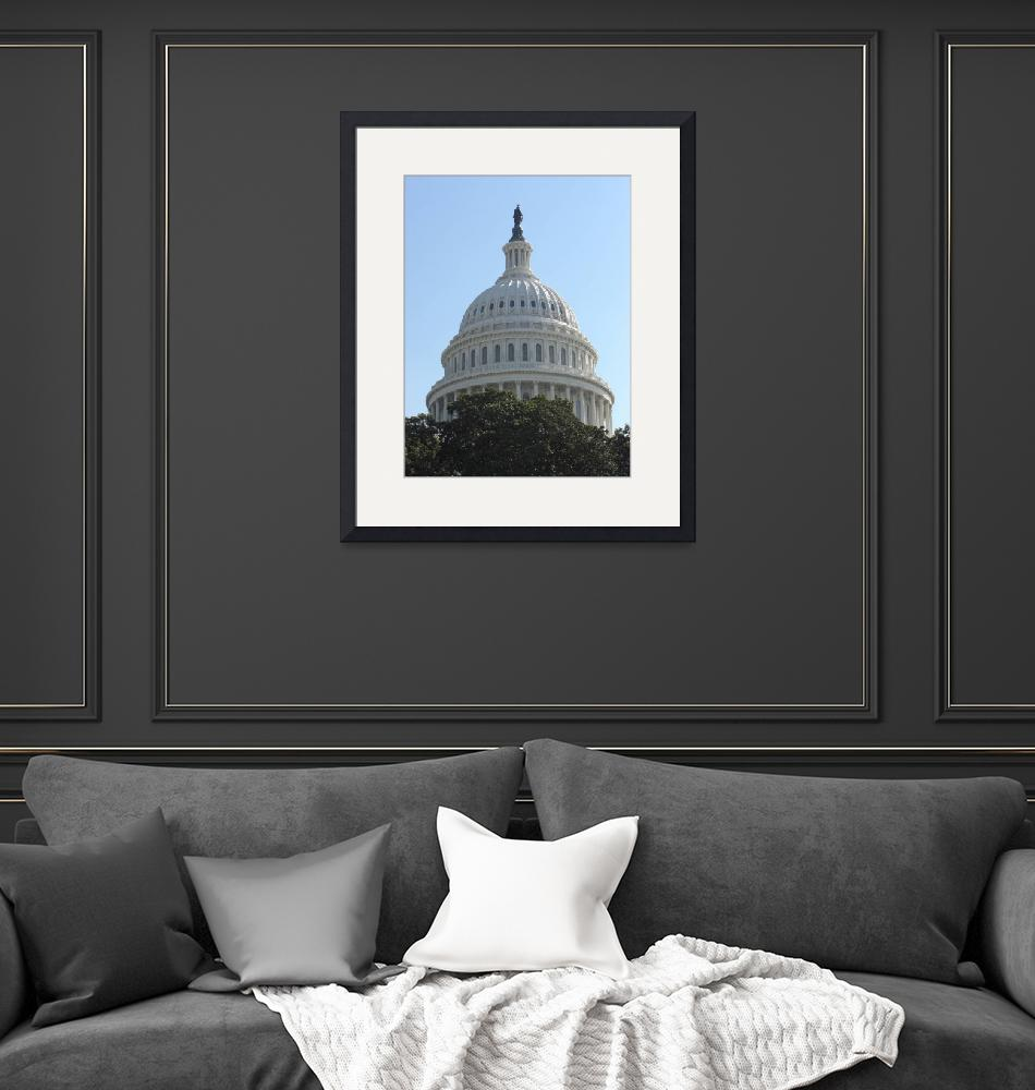 """""""The Dome of the US Capital""""  by jeff-the-intern"""