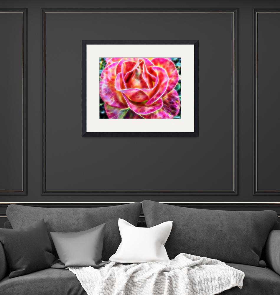 """""""Pink shiny rose""""  (2015) by abbyphotography"""