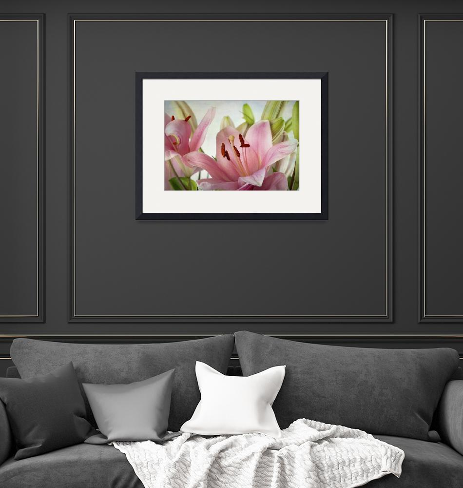 """""""Pink Lily""""  by nailiaschwarz"""