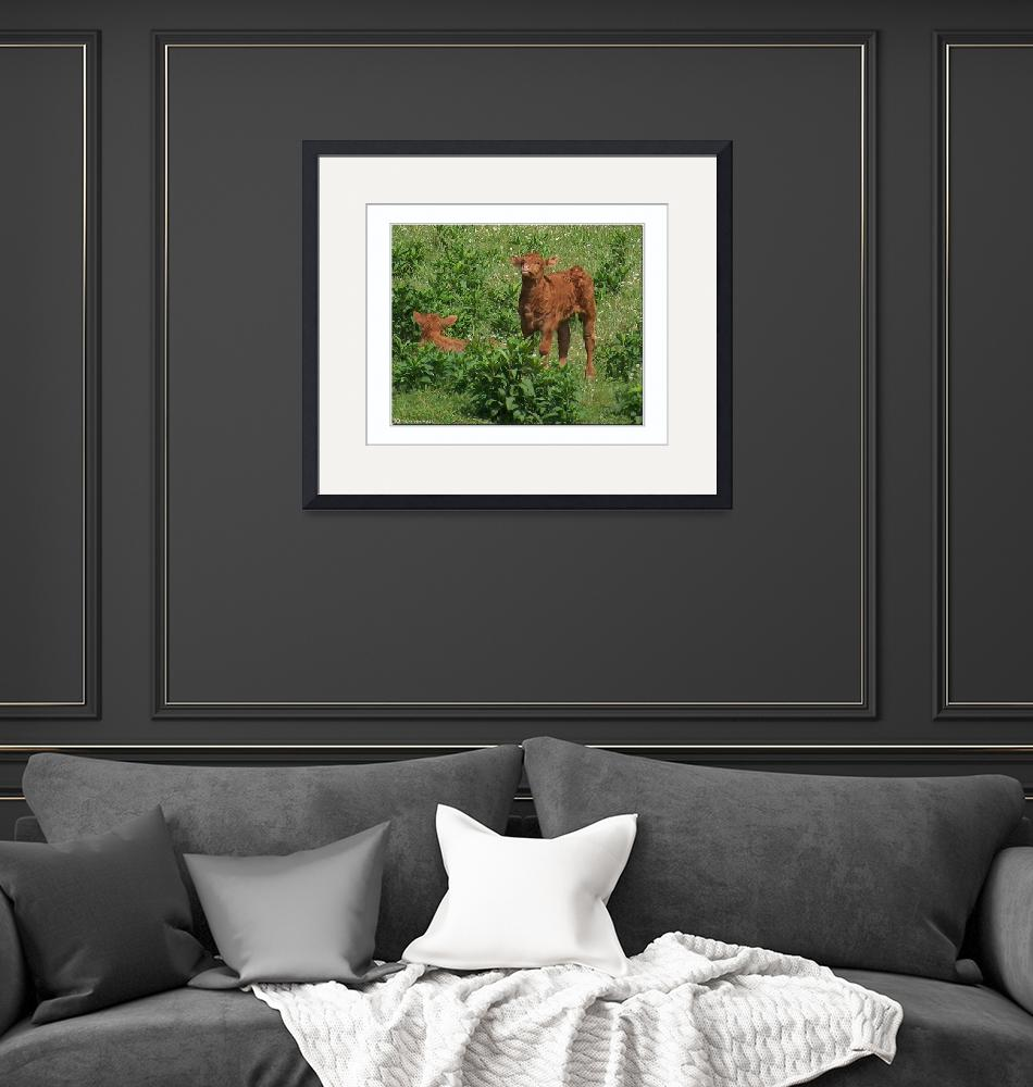 """""""Calfs in the field""""  (2010) by TamIshArt"""