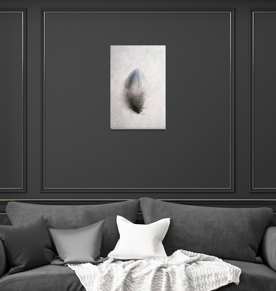 """""""Bluebird Memories""""  by PronghornPix"""