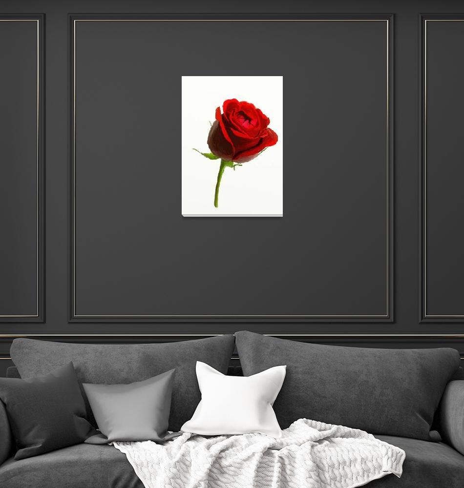 """Wild Red Rose""  (2012) by ArtiKat"
