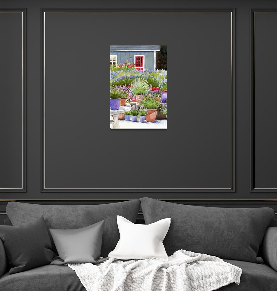 """""""Pots of Lavender""""  by studiobythesound"""