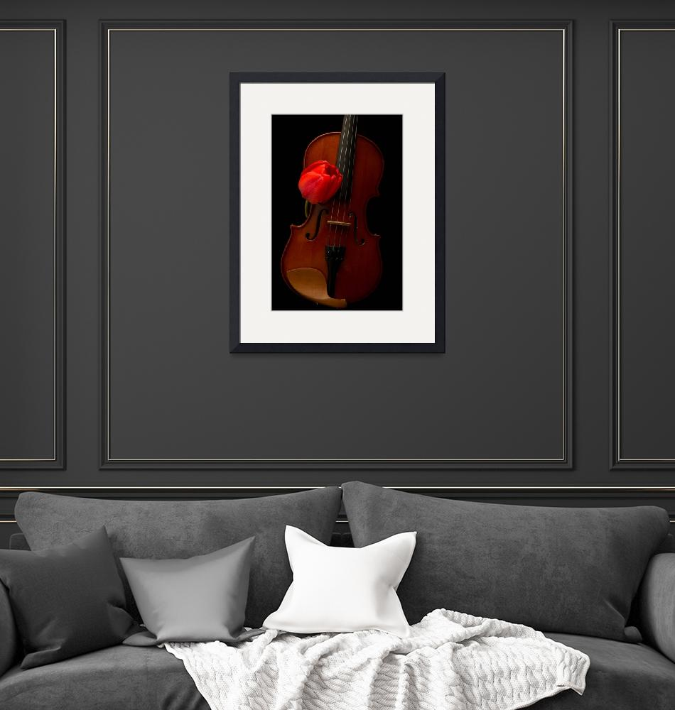 """""""tulip_and_violin""""  by fielding"""