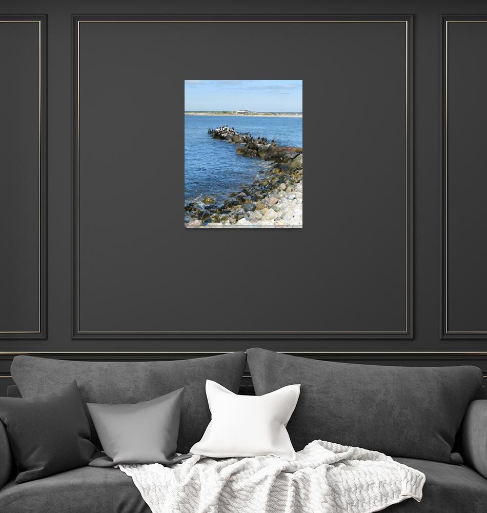 """Cormorant Seascape""  (2008) by MarksClickArt"