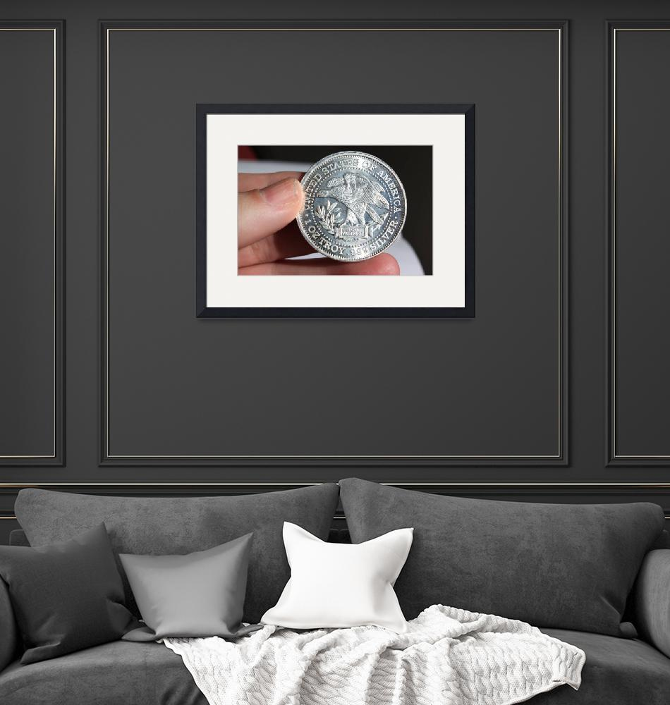 """""""Silver Coin""""  (2011) by Albertphoto"""