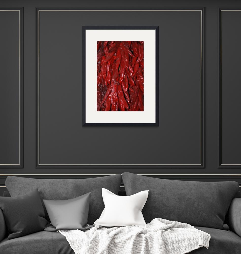 """""""chile ristras""""  (2009) by Jewelymosier"""