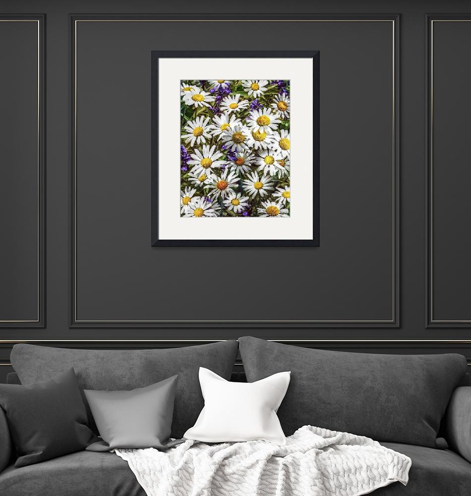 """""""Daisies and Delphinium""""  by susansartgallery"""