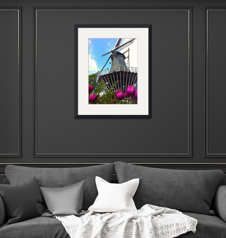 """""""windmill4""""  by phototes"""